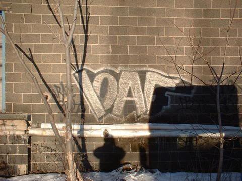aimg.photobucket.com_albums_v223_loafis_dingyslvr.jpg