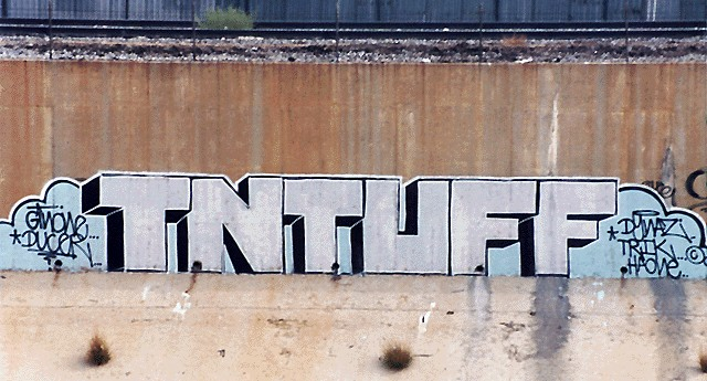 awww.graffiti.org_la_tnt1.jpg