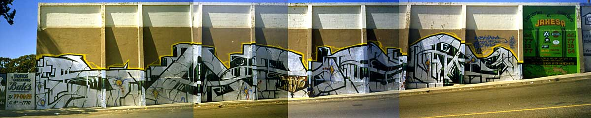 awww.graffiti.org_la_sabermexico.jpg