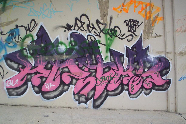 aimg.photobucket.com_albums_v468_wreakone_100_6713.jpg