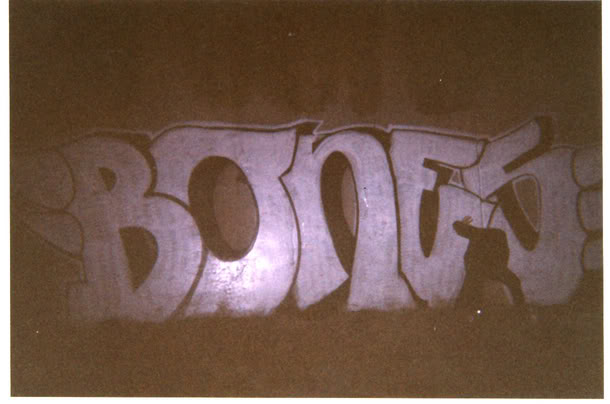 aimg.photobucket.com_albums_v443_mattthone_hugebonesburner.jpg