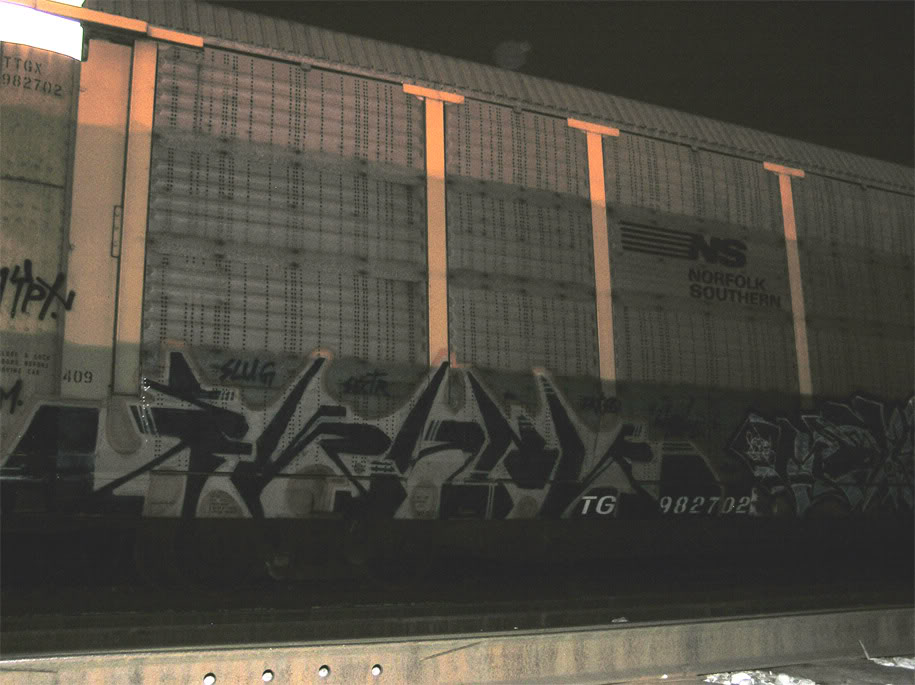aimg.photobucket.com_albums_v245_SWIFTR_PM_skunkautorack.jpg