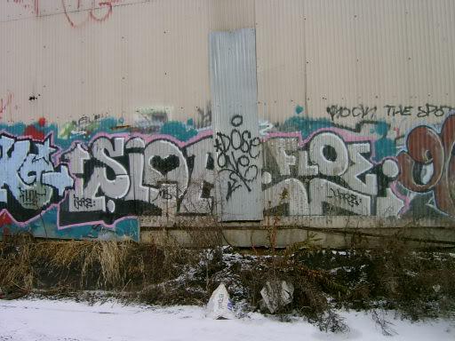 ai16.photobucket.com_albums_b10_thebest13_slopefloe.jpg