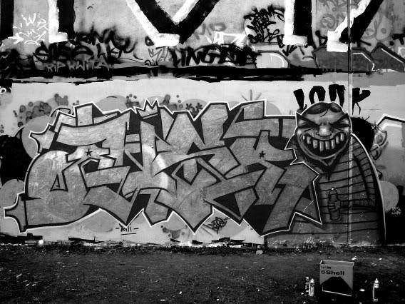 ai13.photobucket.com_albums_a294_ANS_1988_fuckitbw.jpg