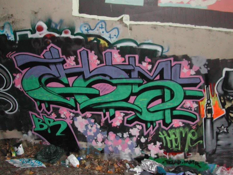 aimg.photobucket.com_albums_v220_theme2_DSCN2269.jpg