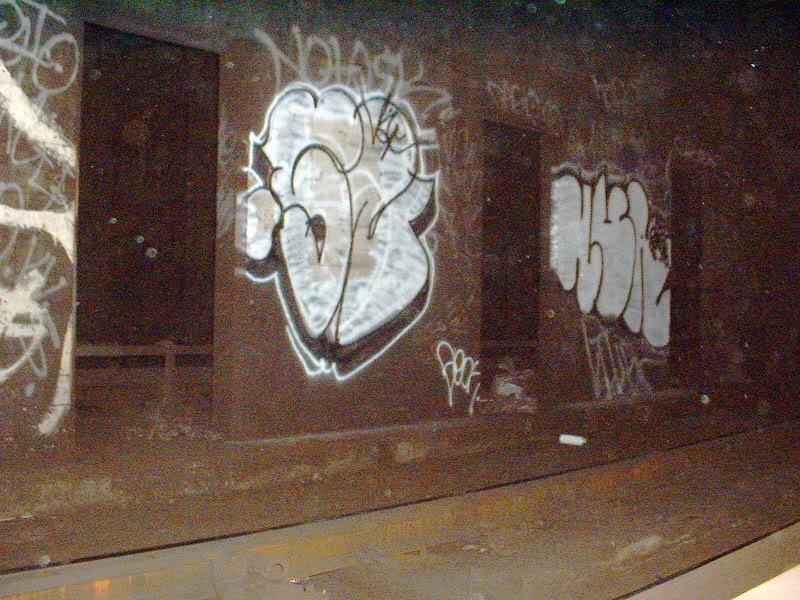 ai38.photobucket.com_albums_e102_AngelDust5000_DSCF0013.jpg