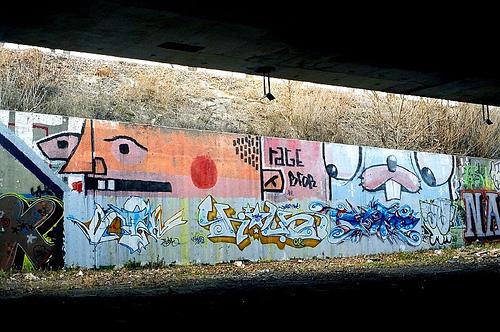 afarm1.static.flickr.com_132_346915196_75b1f23df2.jpg
