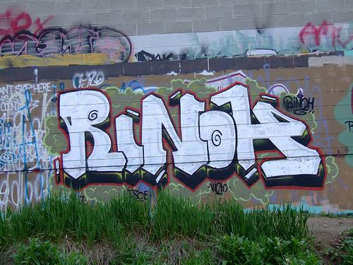 afarm1.static.flickr.com_199_487074532_57daf0b627.jpg