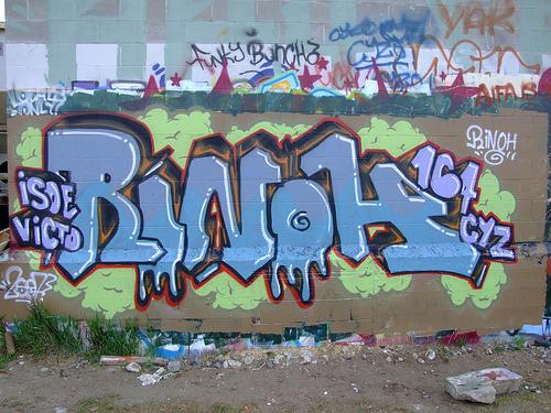 afarm1.static.flickr.com_219_487074486_ce4056cd27.jpg