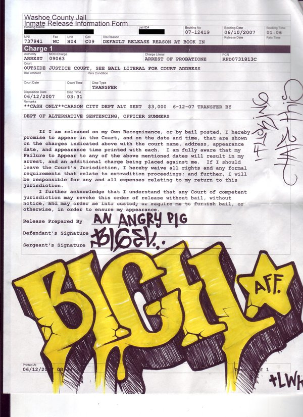 afc01.deviantart.com_fs17_i_2007_171_d_b_more_jail_slips_by_bigel.jpg
