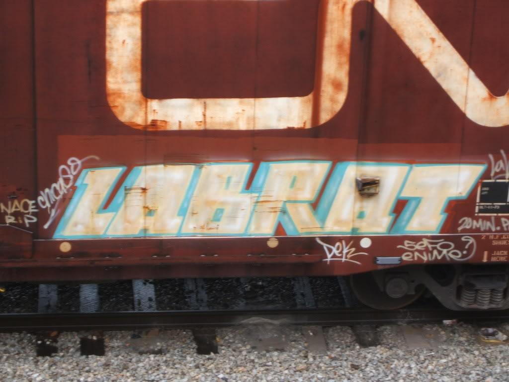 ai176.photobucket.com_albums_w197_GhostFace777_LabRat_14.jpg
