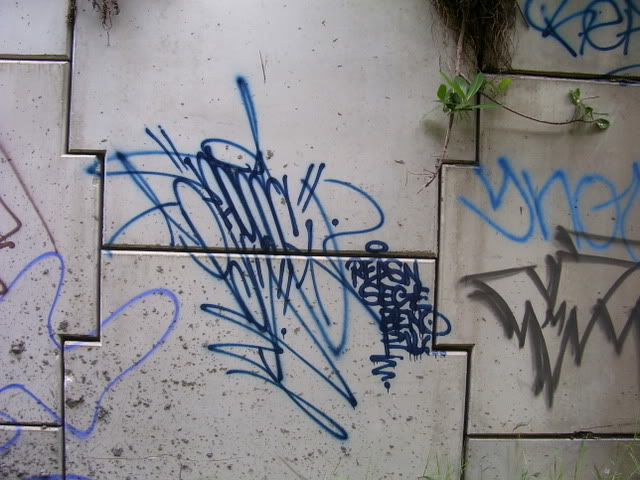 ai149.photobucket.com_albums_s72_esteuno_DABRIDGE029.jpg