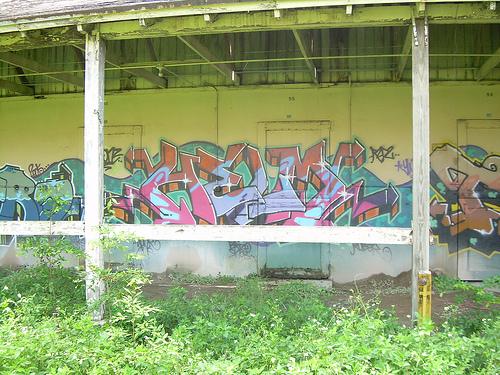 afarm1.static.flickr.com_110_258738240_d1e96ba2b1.jpg