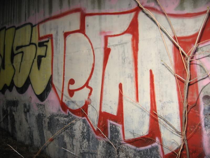 ai47.photobucket.com_albums_f173_starscream247_ARTWORK_GRAFSHOW2255.jpg