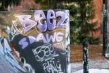 graffiti 6 012