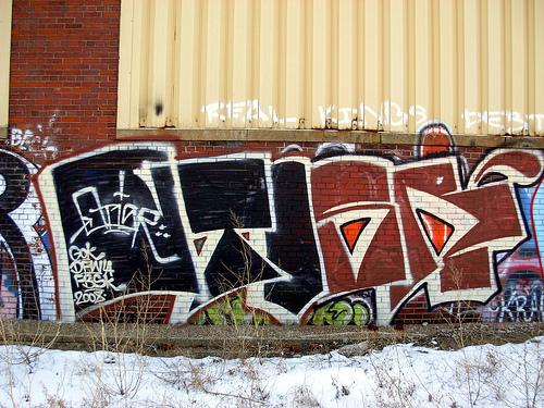 afarm3.static.flickr.com_2342_2361911405_726714515e.jpg
