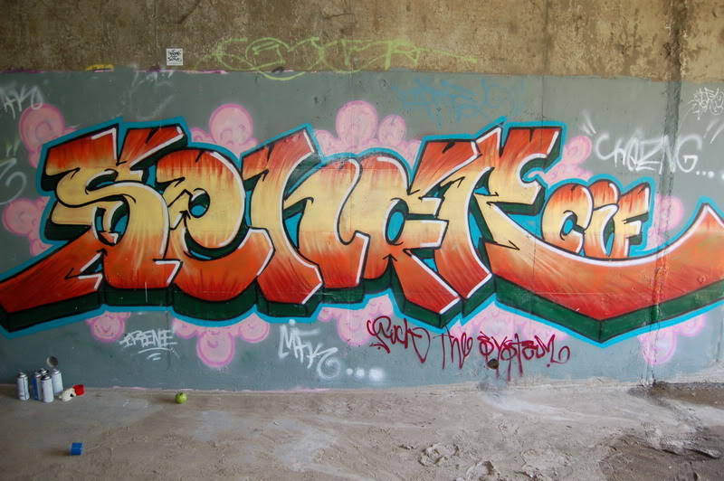 ai71.photobucket.com_albums_i129_shawn6589_DSC_0014_2.jpg