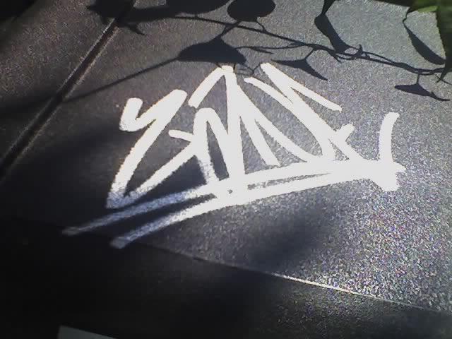 ai232.photobucket.com_albums_ee170_Revived1_Graffiti_1216339978.jpg