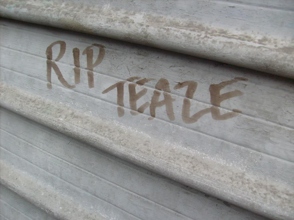 ai232.photobucket.com_albums_ee170_Revived1_Graffiti_RIPTeaze.jpg