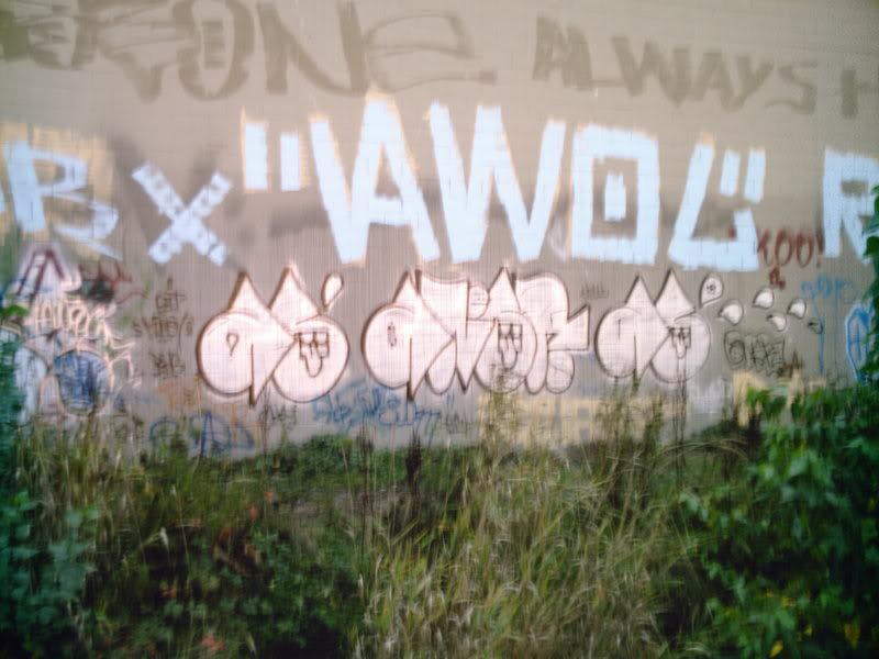 ai17.photobucket.com_albums_b77_JoeCurry403_SUNP0115.jpg