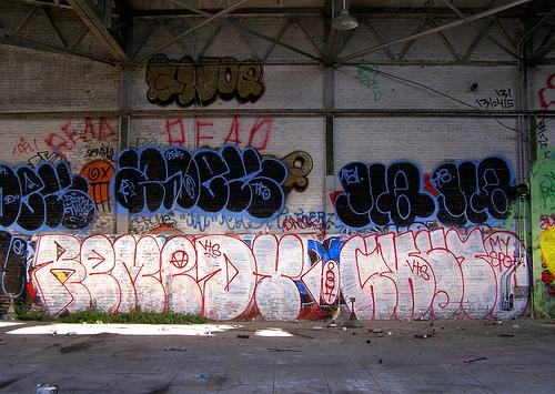 afarm2.static.flickr.com_1145_546218983_0e9144bd7d.jpg