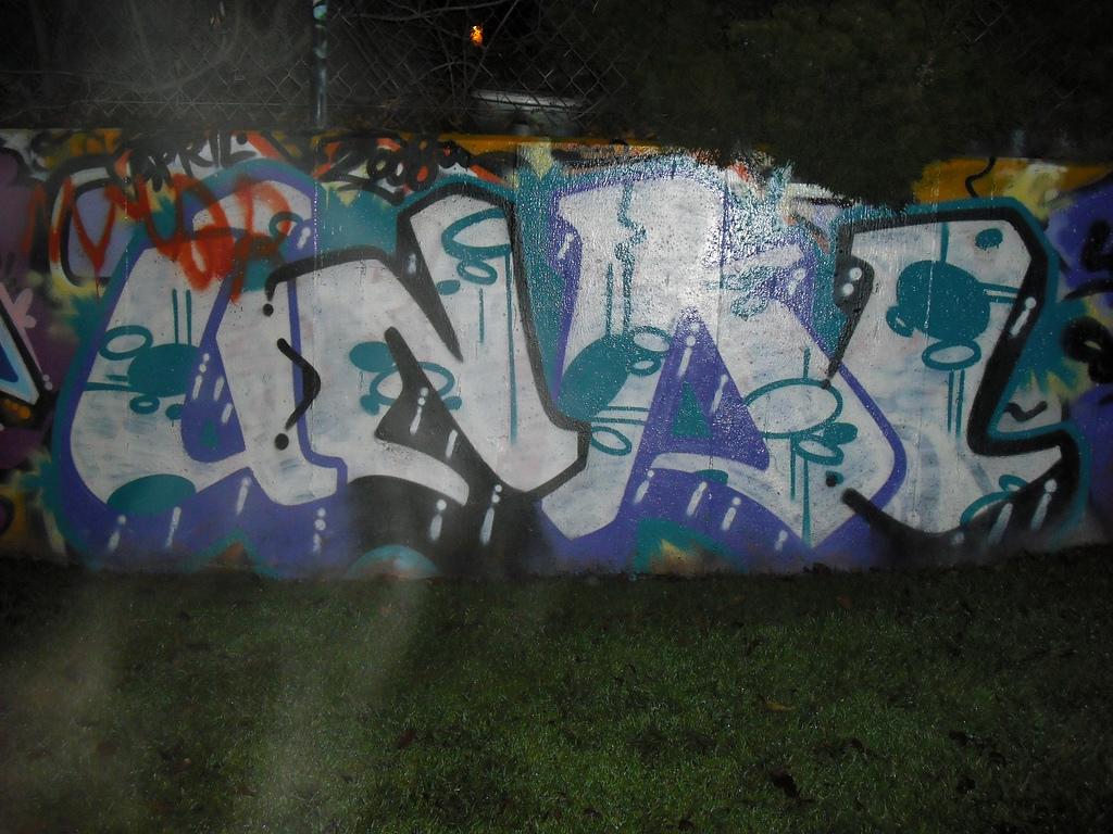 afarm4.static.flickr.com_3248_3137869228_1b4d3a2058_b.jpg