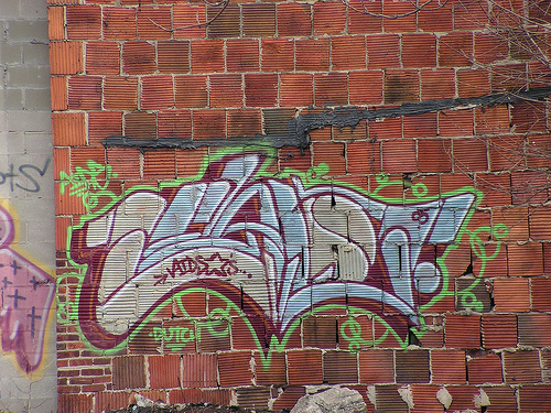 afarm4.static.flickr.com_3197_3072149277_3523e58dc3.jpg_a4f0a23c50a330cf1bf56cae6c33a893.jpg