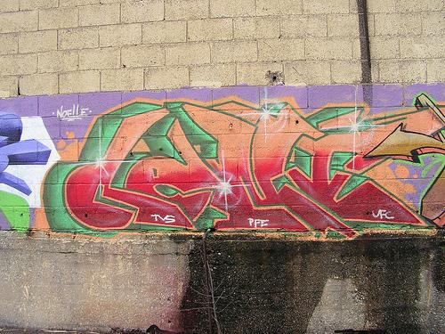 afarm4.static.flickr.com_3282_3056617070_c2d42f4351.jpg_a4f0a23c50a330cf1bf56cae6c33a893.jpg