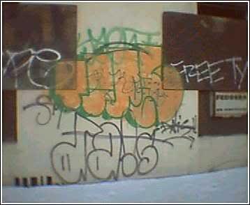 ai298.photobucket.com_albums_mm261_zootedkid_tipe1.jpg