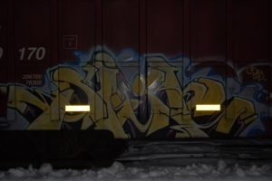 goosedigi 008