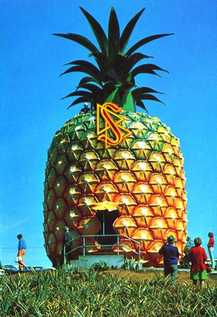 awww.bannerblog.com.au_news_picts_the_big_pineapple_scientolo.jpg