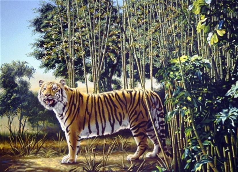 awww.geckoandfly.com_wp_content_uploads_2007_06_the_hidden_tiger_optical_illusion.jpg