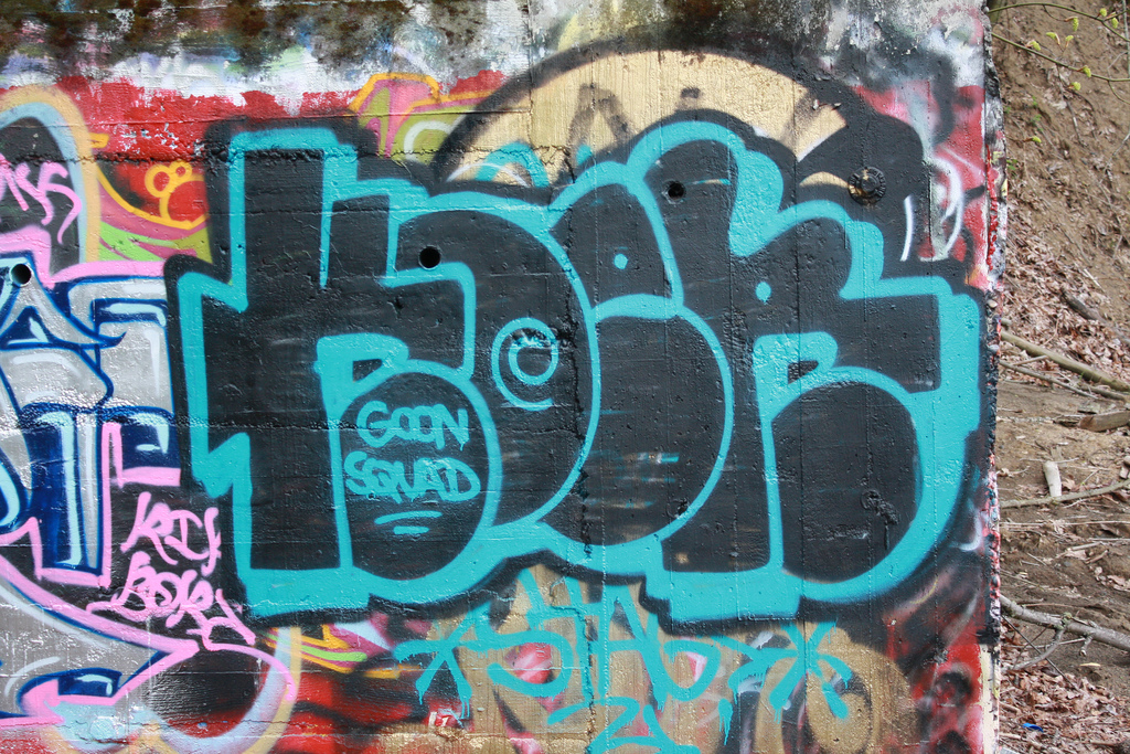 afarm4.static.flickr.com_3623_3433740550_b01271d0cd_b.jpg