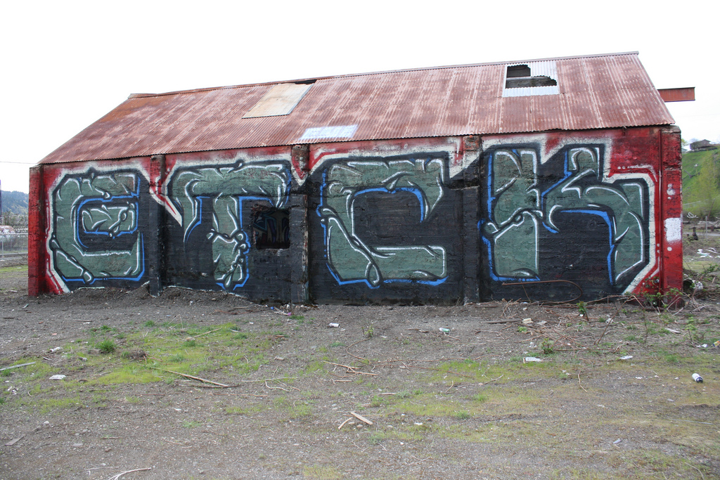 afarm4.static.flickr.com_3390_3432899757_a0cc2515a0_b.jpg