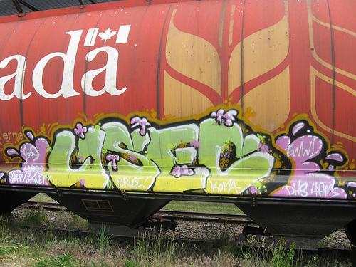 afarm3.static.flickr.com_2596_3748070230_1559959f2e.jpg
