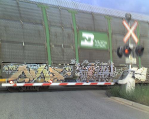 afarm3.static.flickr.com_2579_3669495967_bdf482e7db.jpg