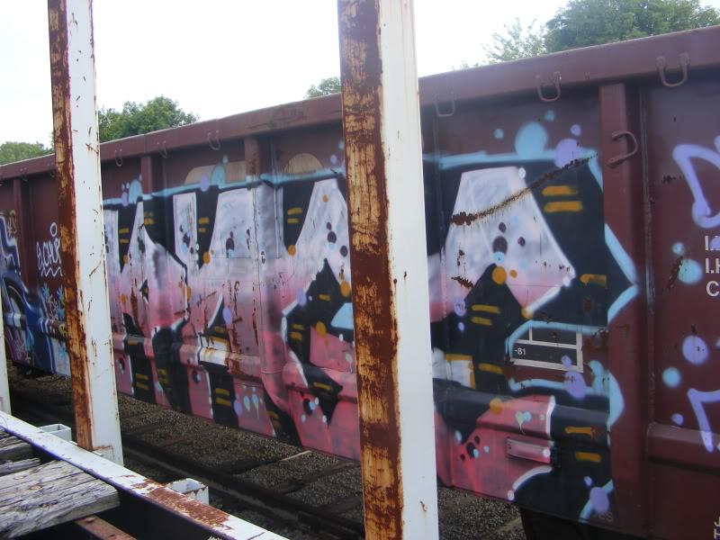 ai381.photobucket.com_albums_oo257_CaNaDuH905_trains_DSCF2240.jpg