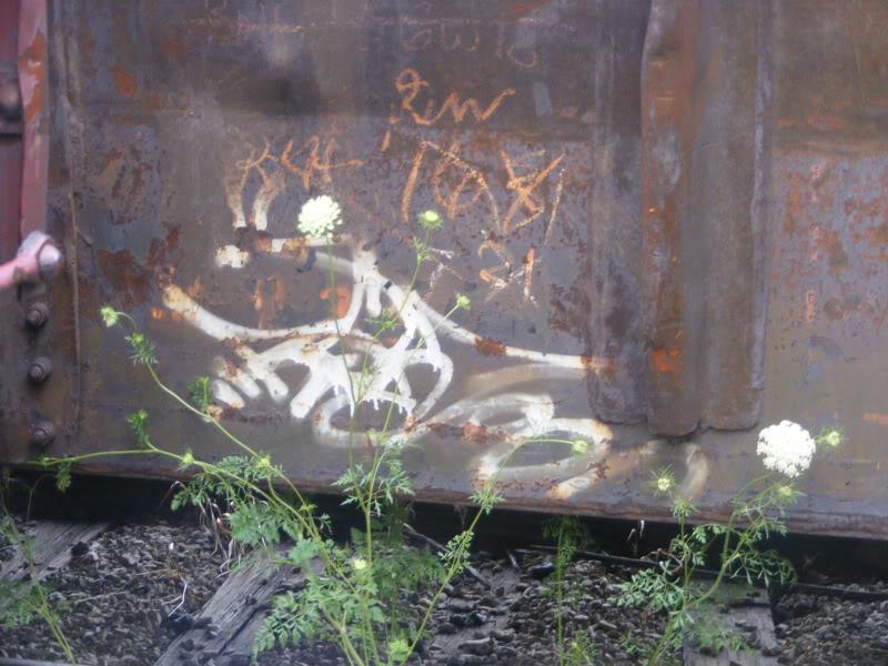 ai381.photobucket.com_albums_oo257_CaNaDuH905_trains_DSCF2256.jpg