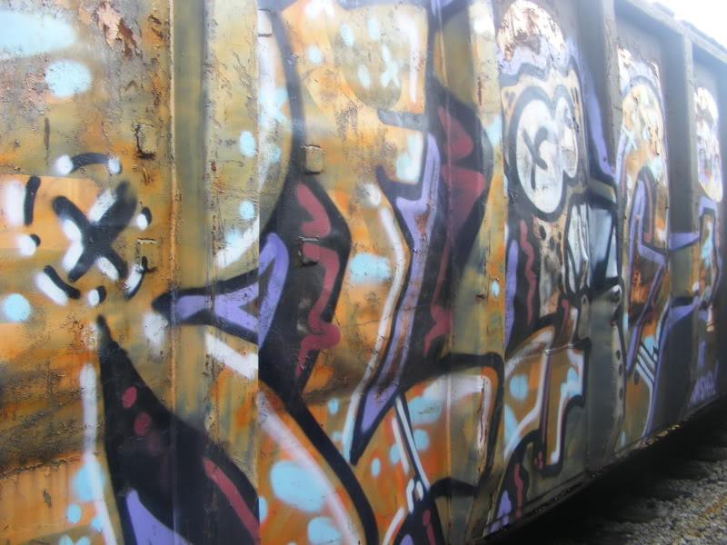 ai381.photobucket.com_albums_oo257_CaNaDuH905_trains_DSCF2274.jpg
