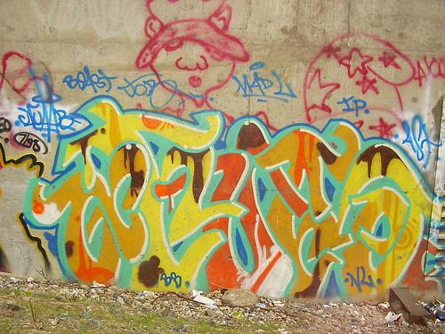 afarm3.static.flickr.com_2592_3832899398_7c2405194f.jpg