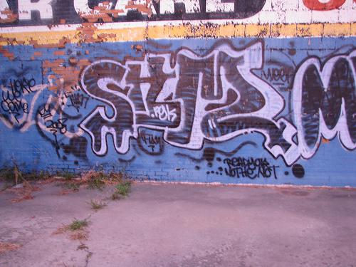 afarm4.static.flickr.com_3498_3888216323_1a162824e7.jpg