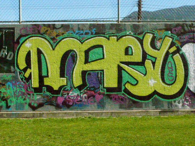 afarm4.static.flickr.com_3498_3926592865_4acf25219c_o.jpg
