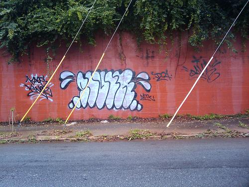 afarm3.static.flickr.com_2448_3936043160_d1e8717880.jpg