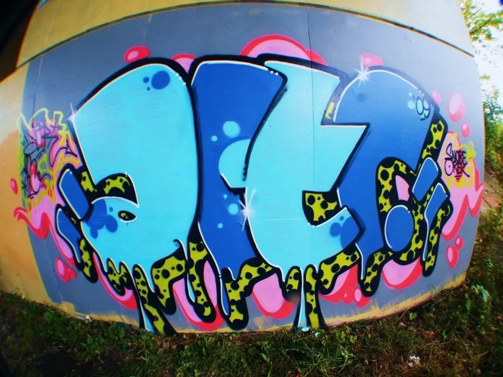 ai621.photobucket.com_albums_tt300_2wayducttape_DSCF7789_1.jpg