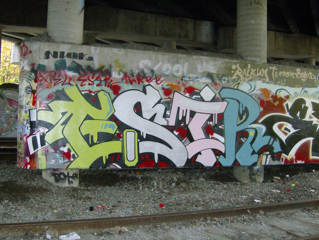 afarm3.static.flickr.com_2645_4040313463_1f55058daf_b.jpg