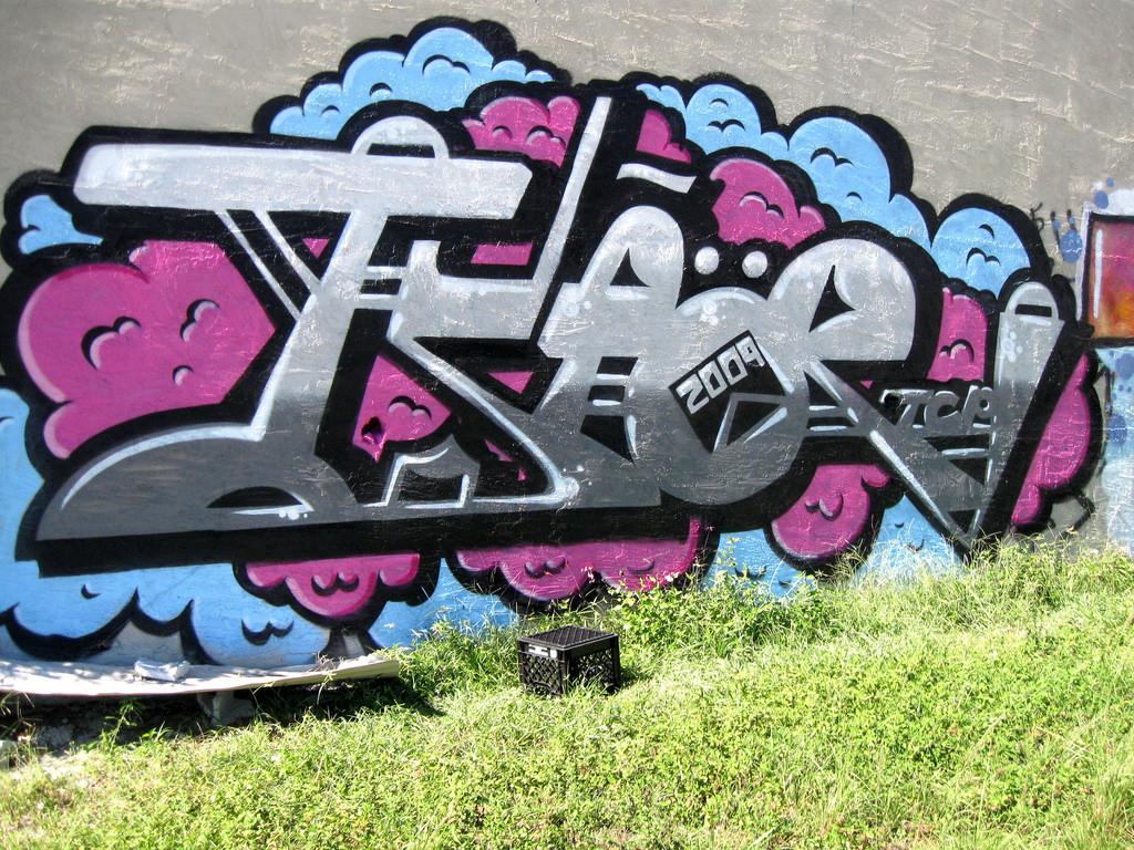afarm3.static.flickr.com_2489_4068447765_17fe516b83_b.jpg