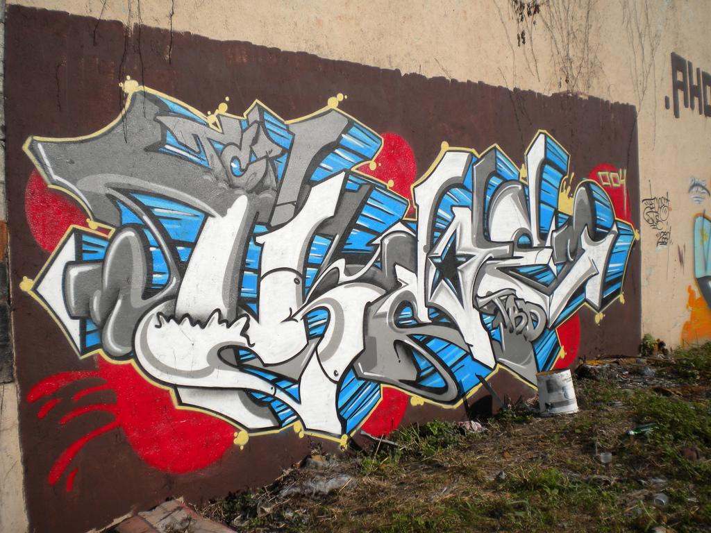 afarm3.static.flickr.com_2465_4059185971_1a43abdfbb_b.jpg