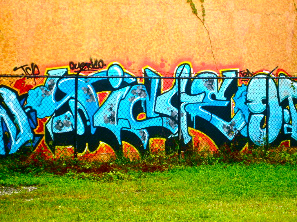 afarm3.static.flickr.com_2697_4133618785_1200d4fd2a_o.jpg