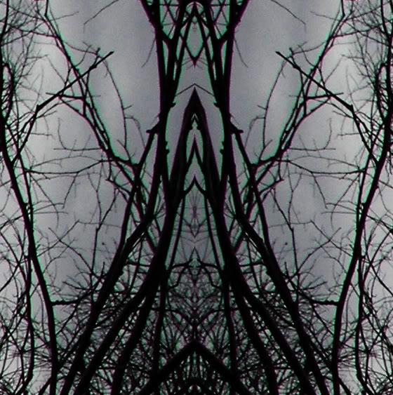 ai1011.photobucket.com_albums_af231_capitalreign_contra4crop.jpg