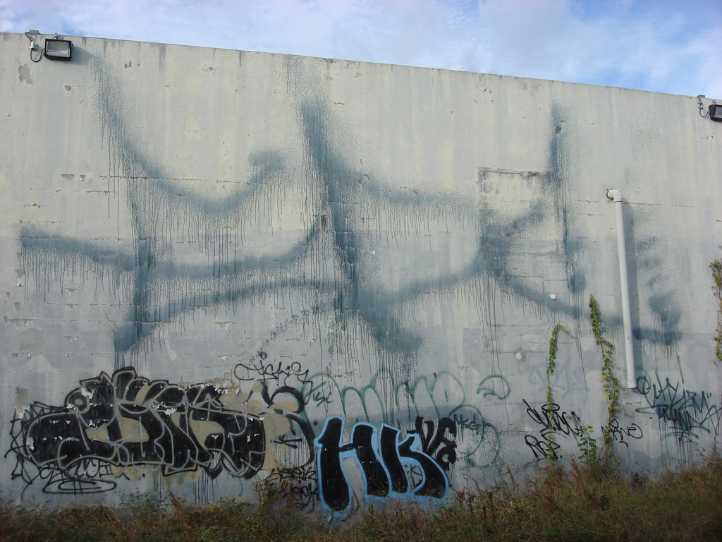 afarm3.static.flickr.com_2630_4131852711_e97a201ac4_b.jpg